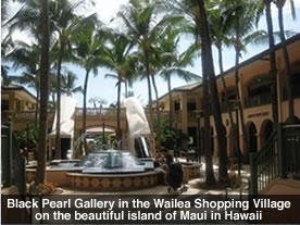 Black Pearl Gallery in Maui